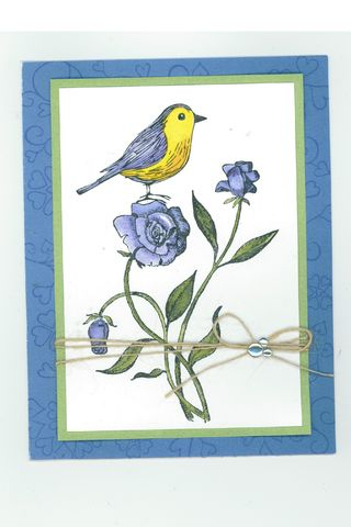 Valbirdcard